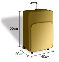 elige lo último los recién llegados estilo de moda Leather Tote Bag: Tamaño Maximo Equipaje De Mano Avianca