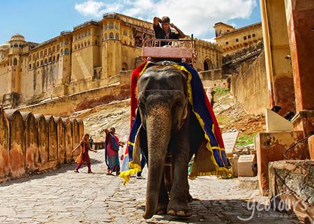 Asia (10 días) Contraste de la India y Nepal