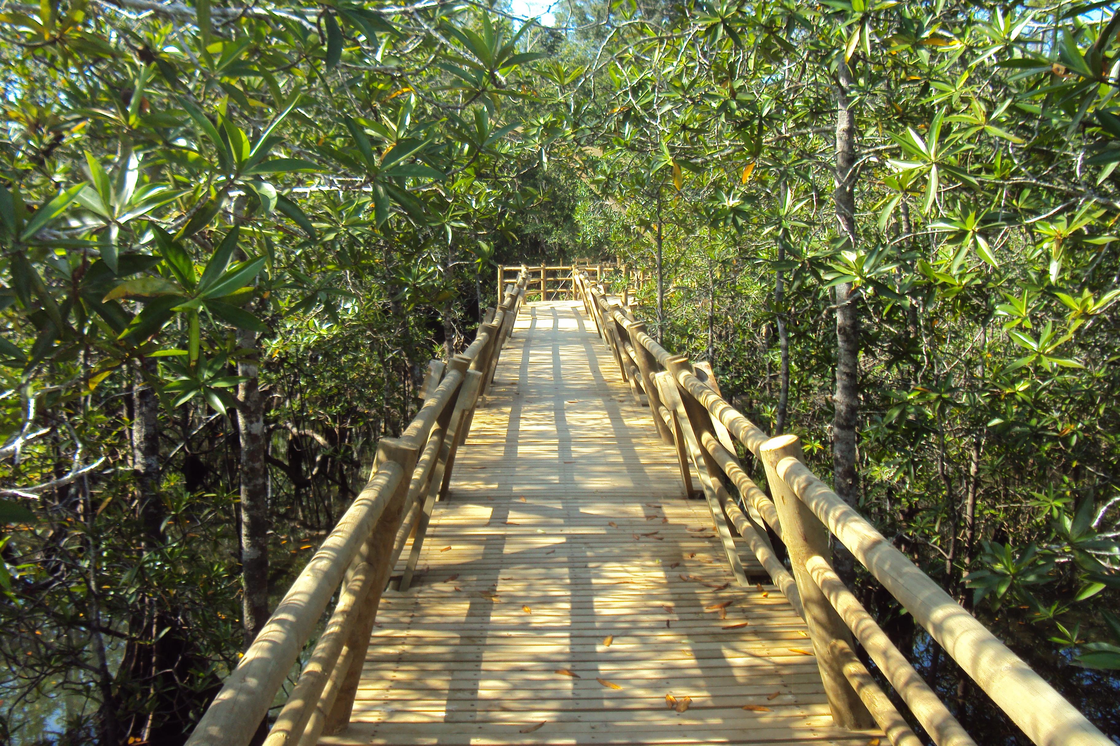 Bahia Solano Ecolodge El Almejal (Plan descanso) 2020