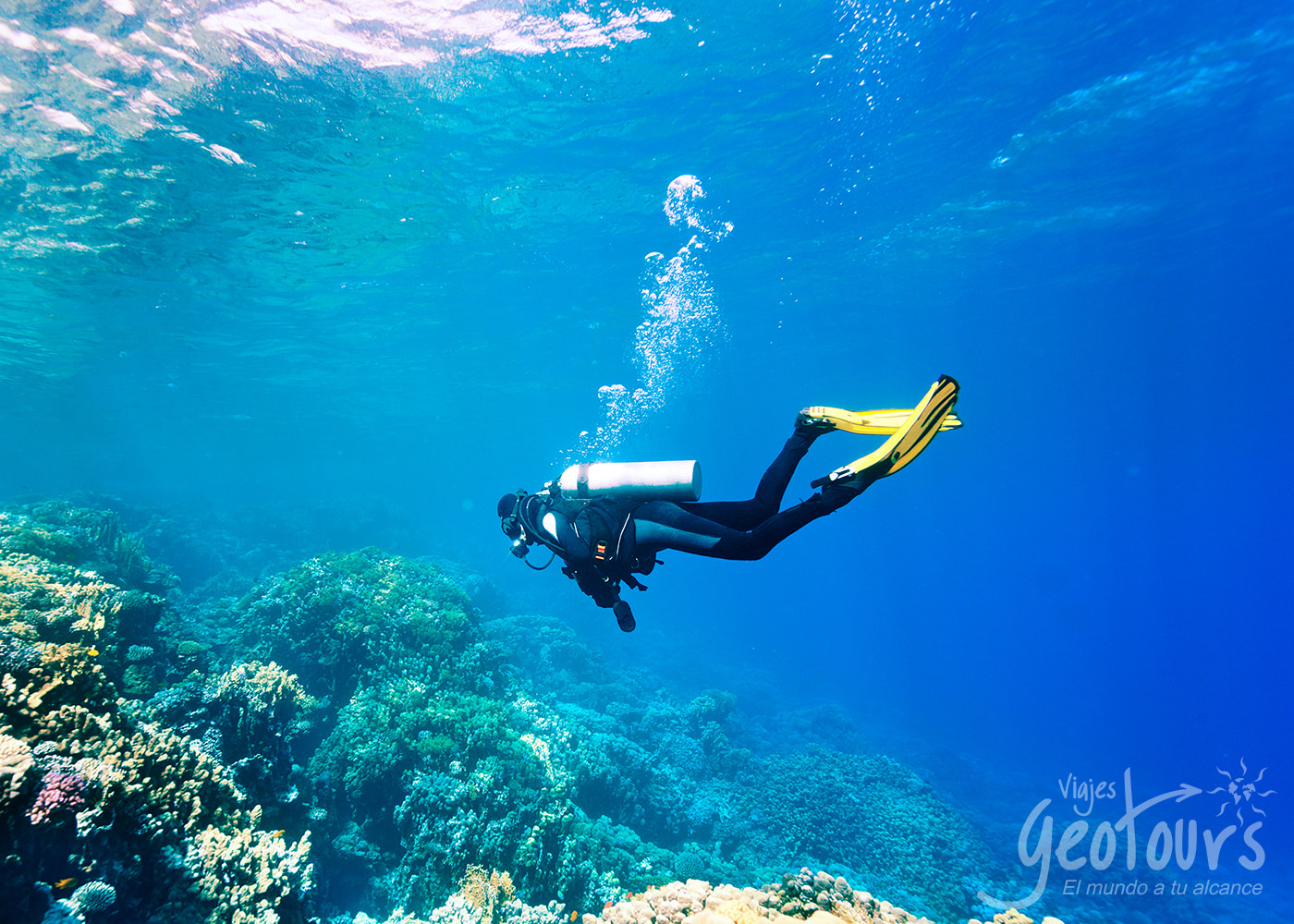 Cruceros desde Cartagena, actividades y excursiones