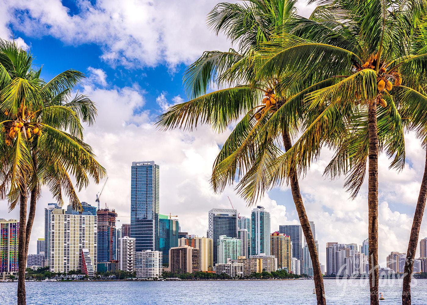 Excursion a Miami y Orlando en Diciembre desde Medellin