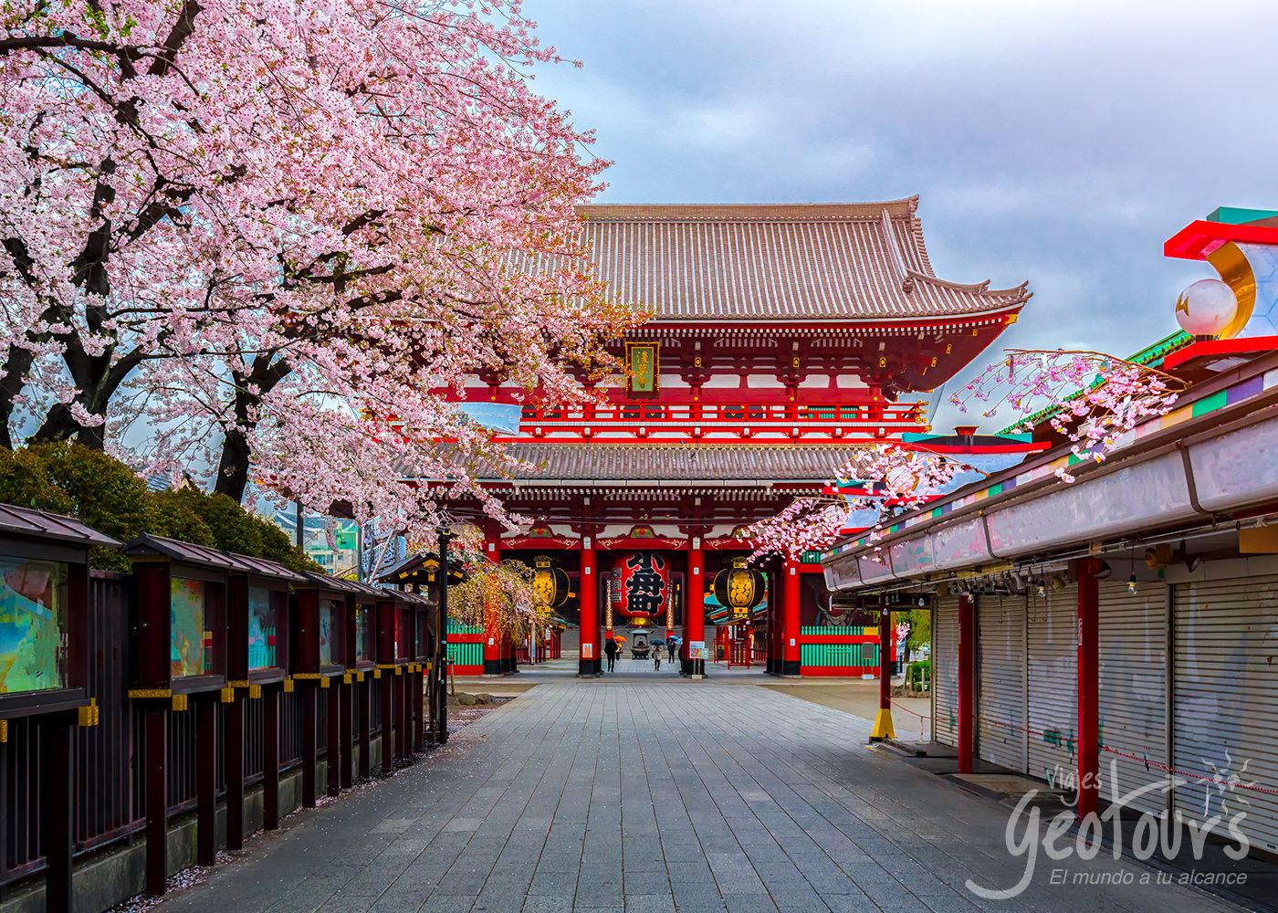 Viajes a Japón desde Colombia